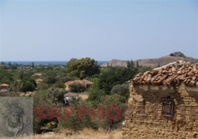 Eressos, Lesvos Island 81105, ,House and Land,For Sale,1082