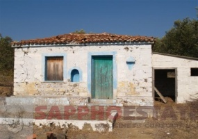 Eressos, Lesvos Island 81105, ,House and Land,For Sale,1095